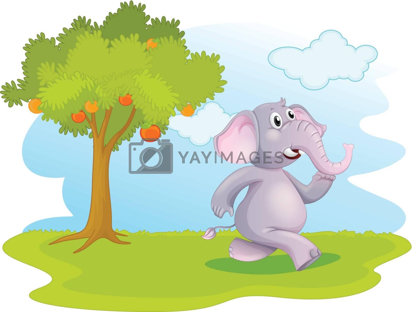 Illustration of an elephant running near the orange tree on a white background