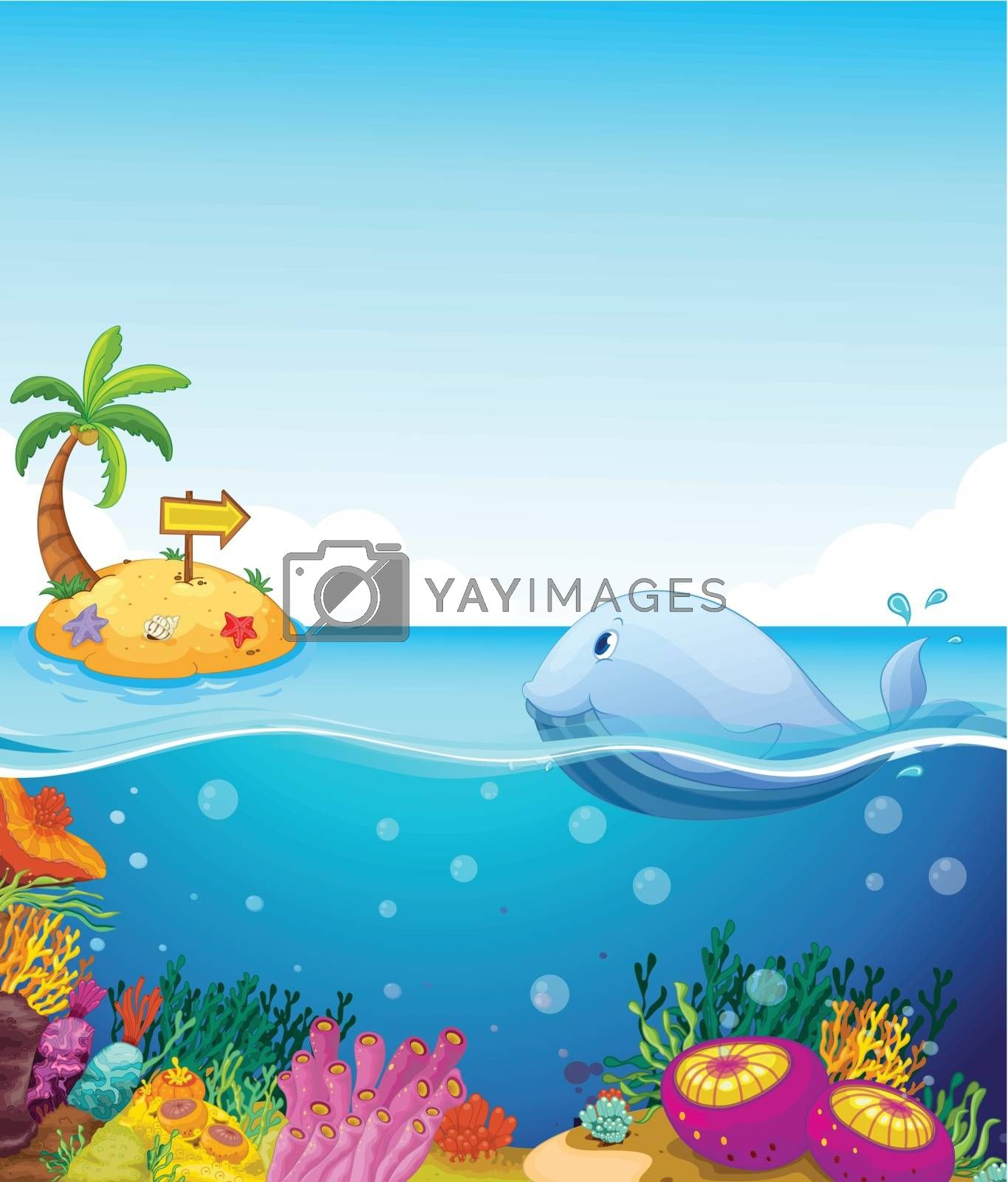Illustration of a fish looking at the island with an arrow
