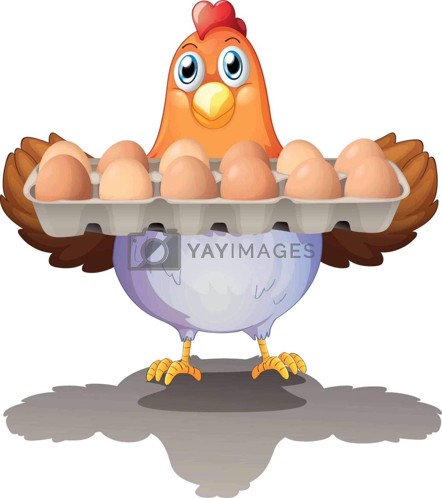 Illustration of a hen holding a tray of eggs on a white background