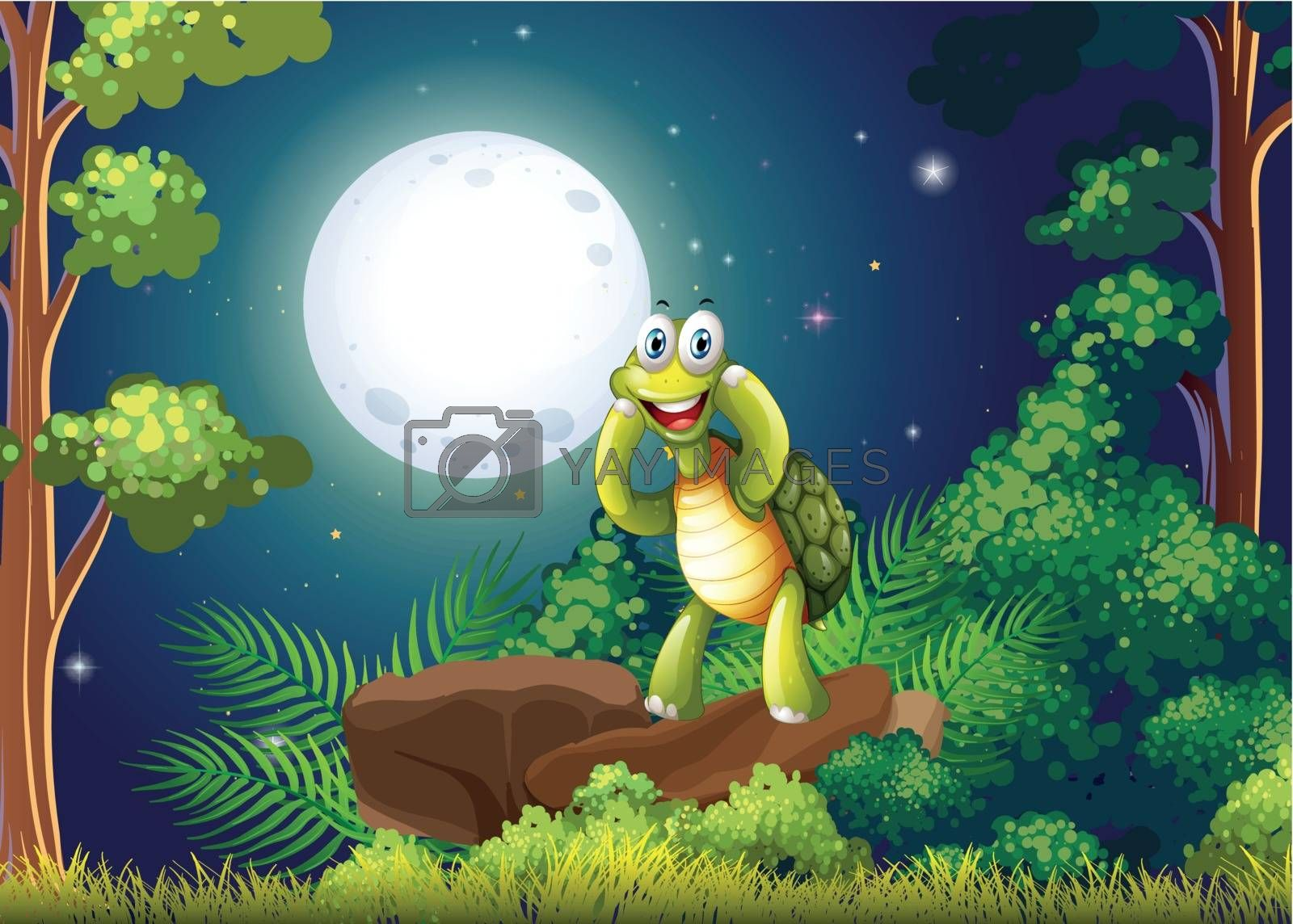 Royalty free image of A smiling turtle at the forest in the middle of the night by iimages