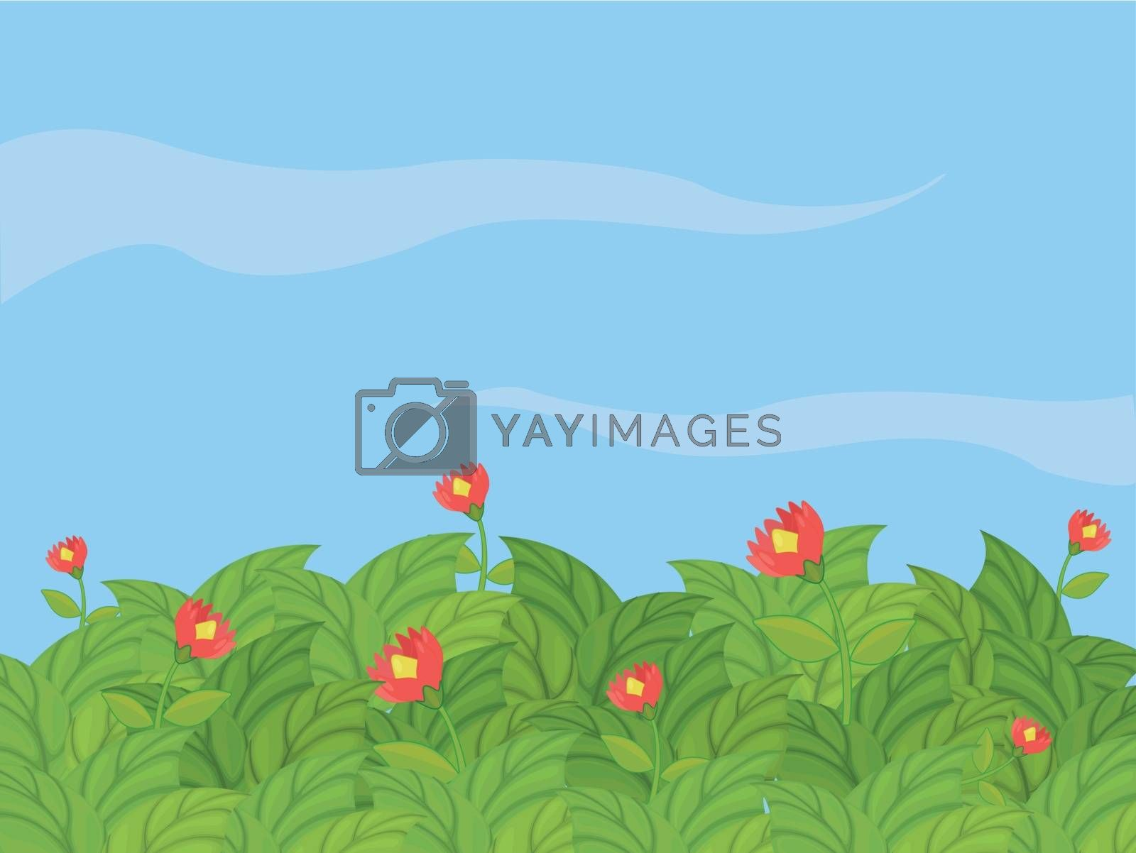 Royalty free image of A beautiful flower plants by iimages
