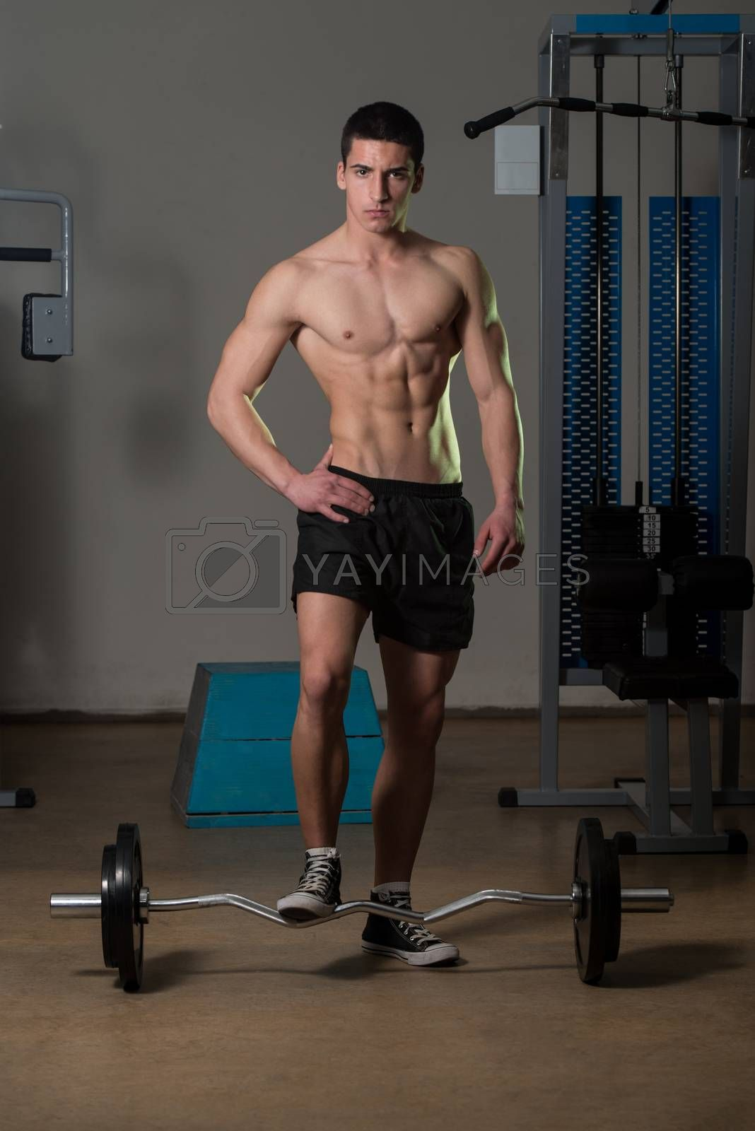 Royalty free image of Young Muscular Men Standing By The Barbell by JalePhoto