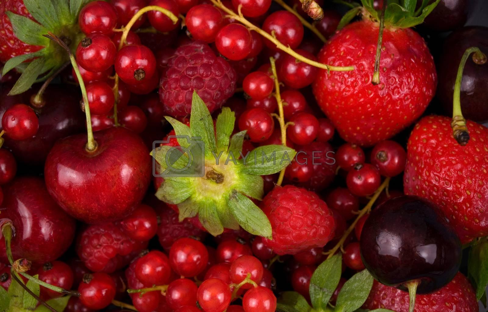 fresh red  fruit  background close up