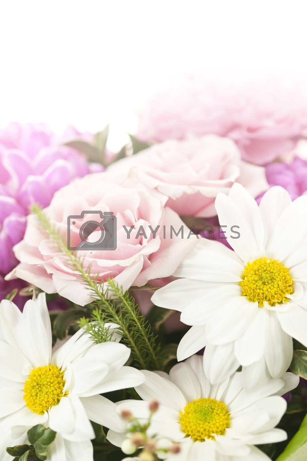 Fading background of flower arrangement with pink and white flowers