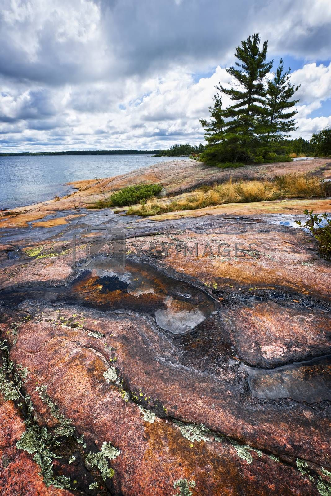Rocky lake shore of Georgian Bay in Killbear provincial park near Parry Sound, Ontario Canada