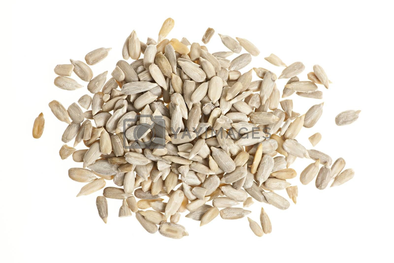 Heap of raw shelled sunflower seeds isolated on white background from above