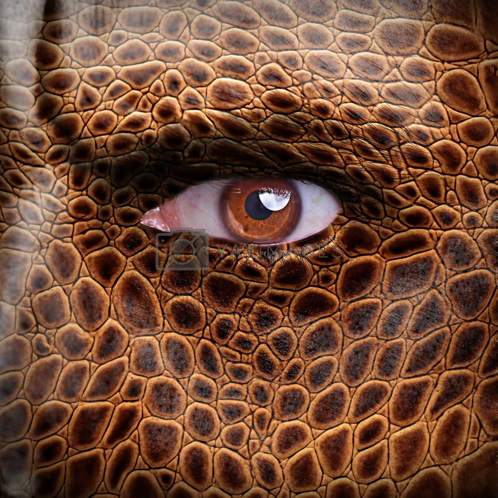 Lizard skin pattern on angry man face - nature concept