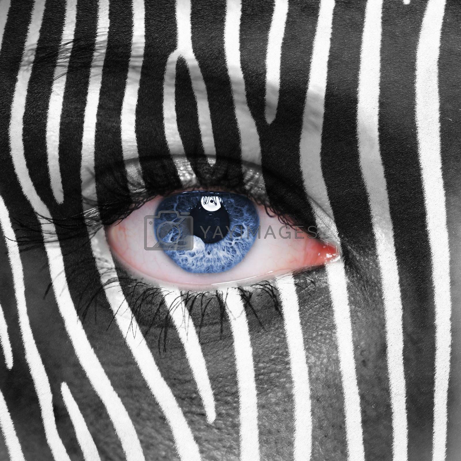 Zebra pattern on human face
