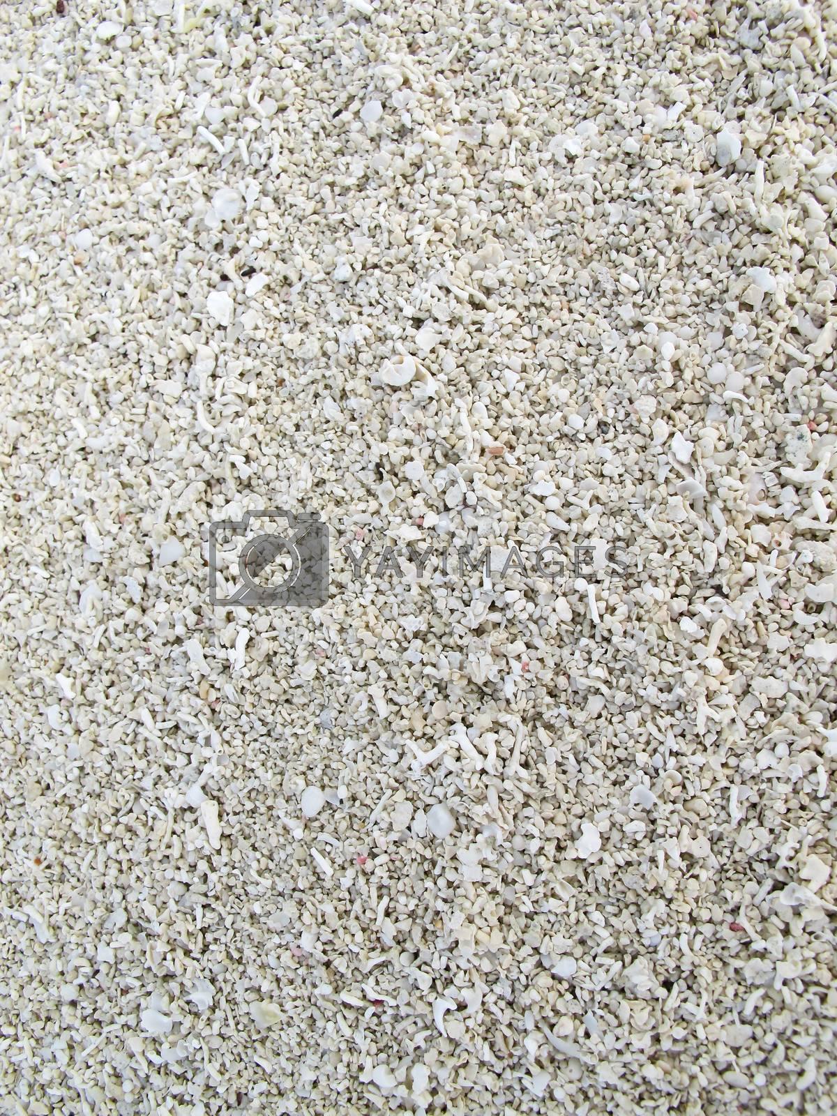 The white sand on the beach