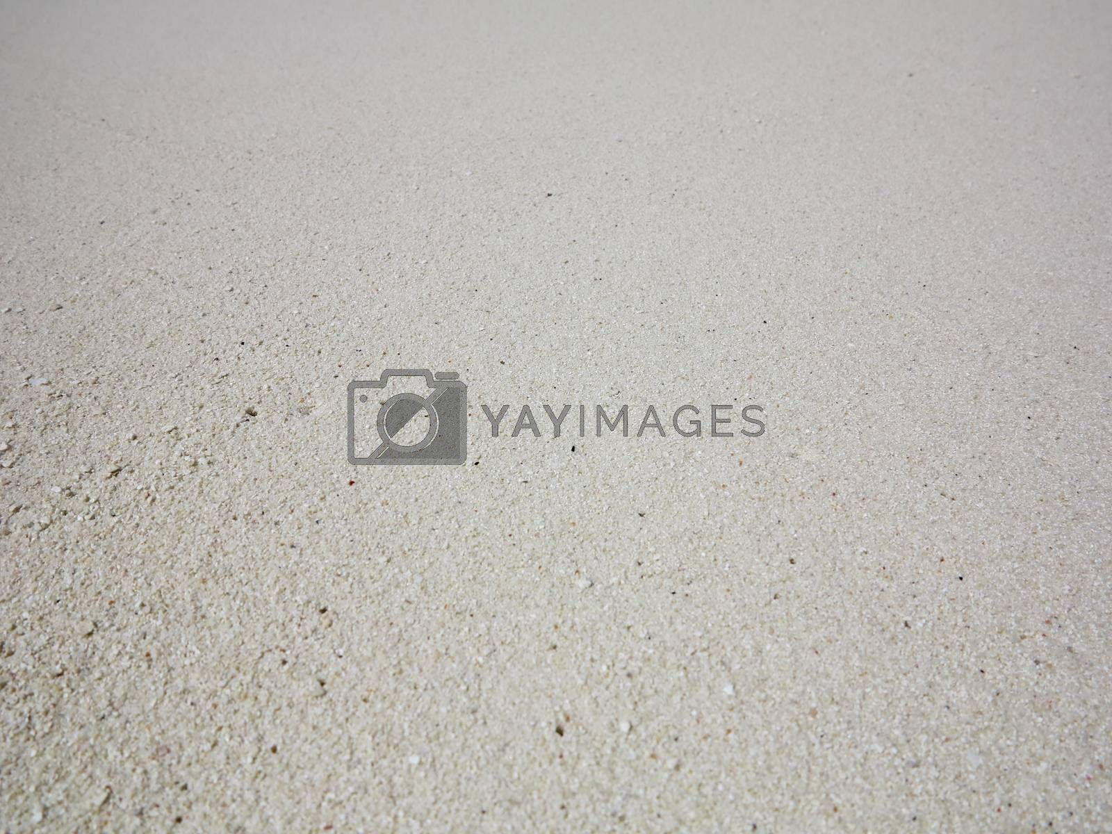 Close up view of white beach sand