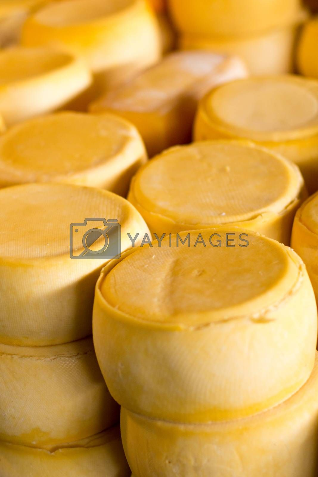 Pile of Peru cheese on the Cusco cheese market  by Mariusz Prusaczyk