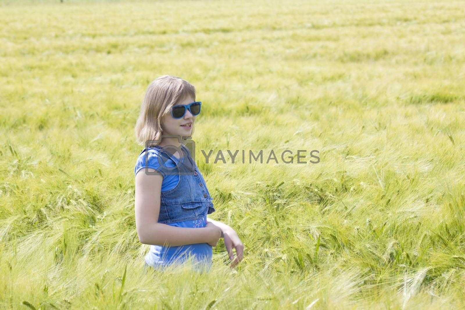 young girl in the field of barley