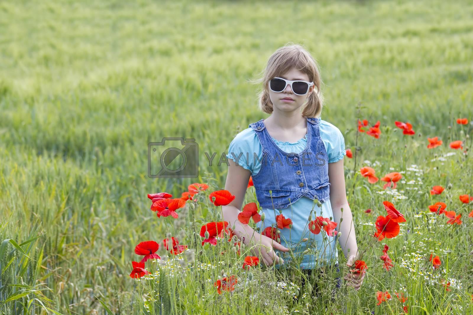 Cute young girl in poppy field