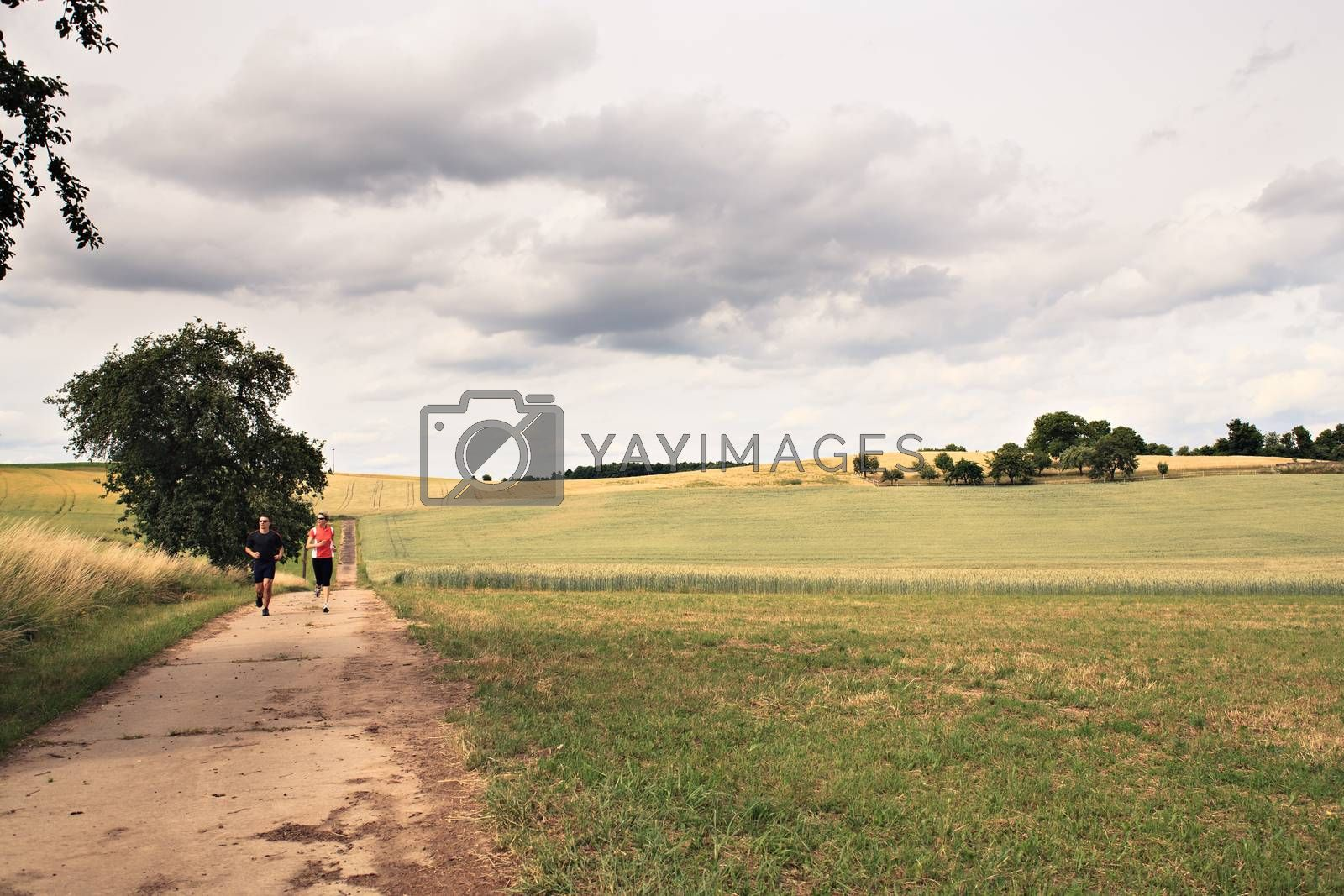 people jogging on the road in front of rural landscape