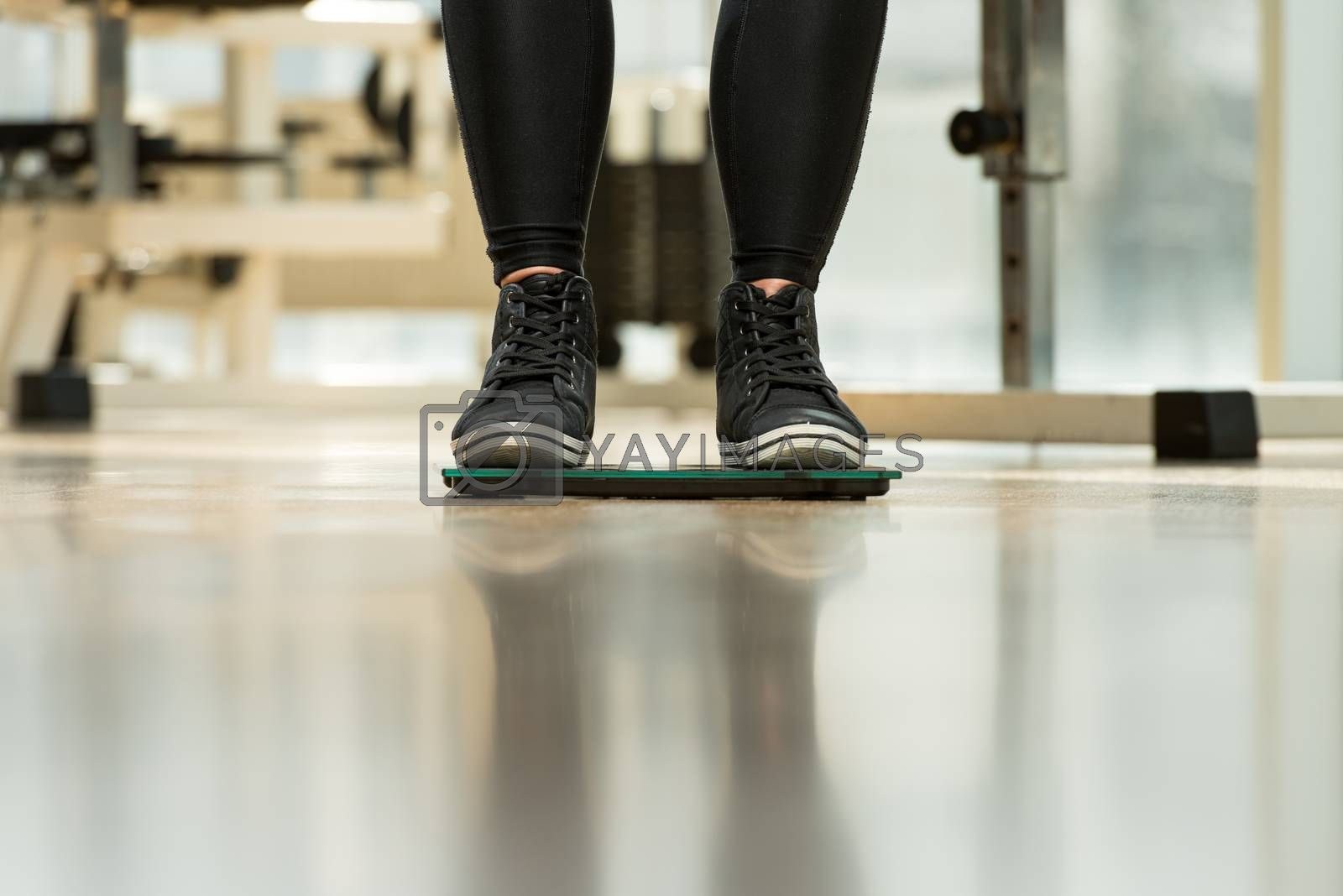 Royalty free image of Weighing The Loss by JalePhoto