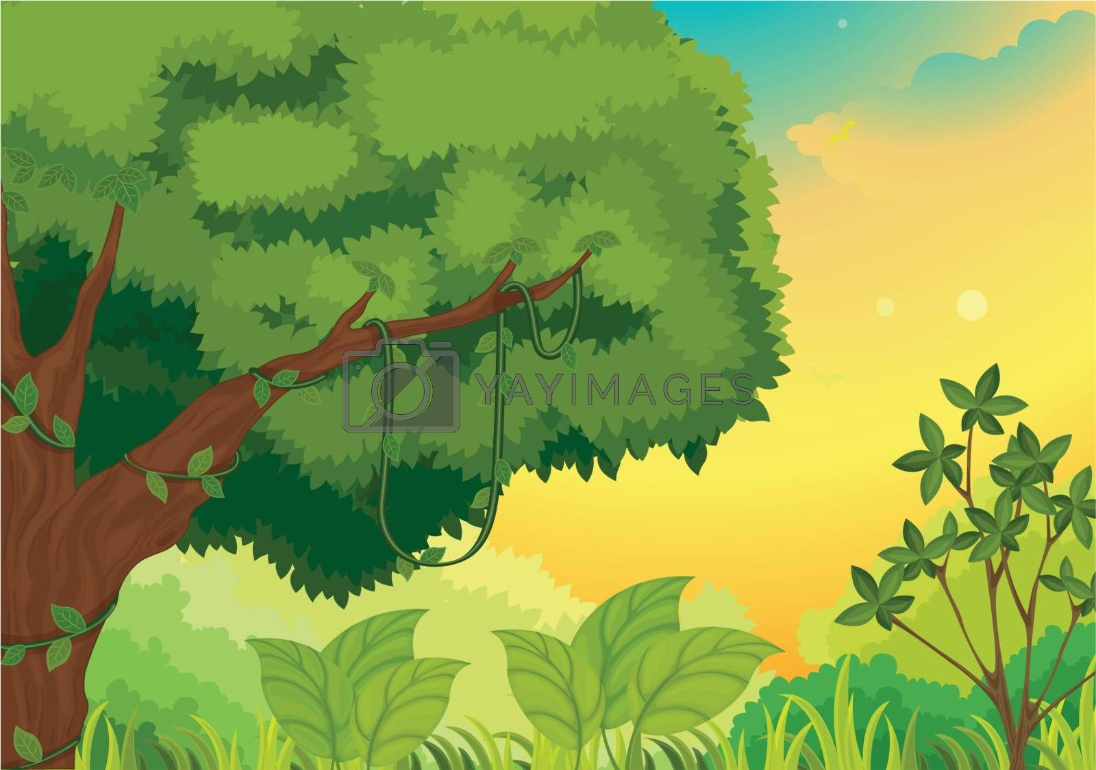 Illustration of a nature background