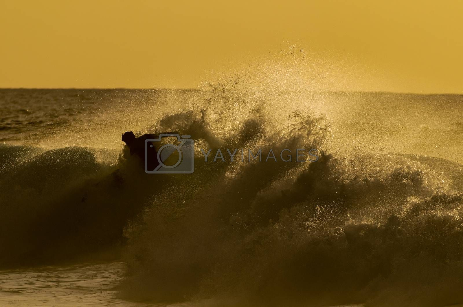 Royalty free image of Backlight Silhouette Surfer by underworld