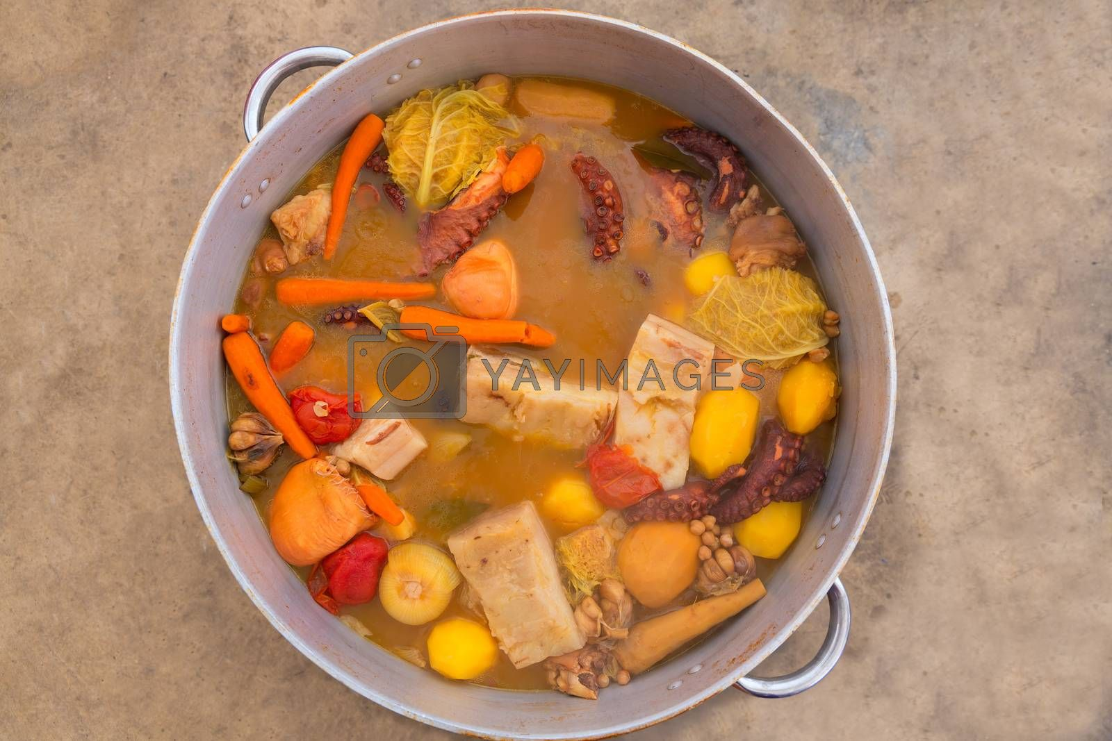 Octopus stew from mediterranean traditional recipe in Alicante spain