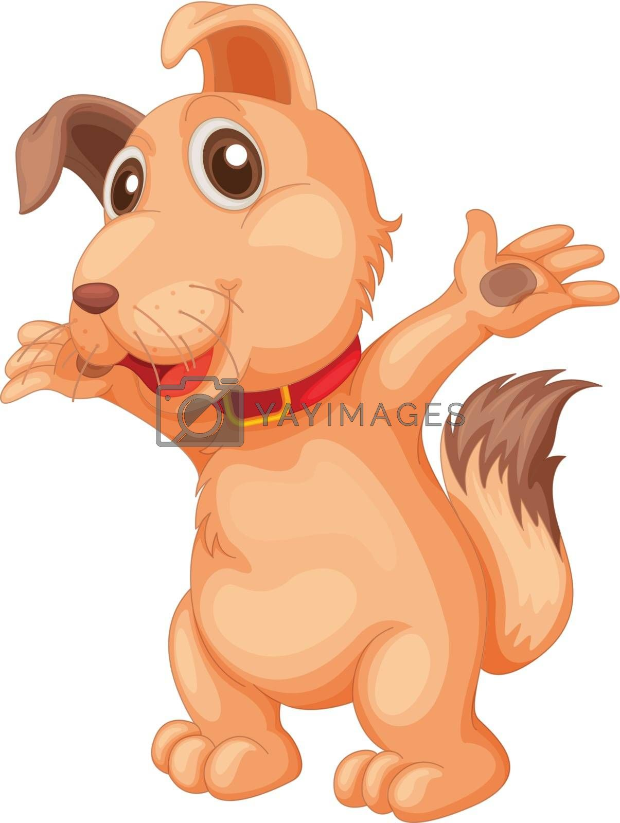Puppy dog pet on a white background