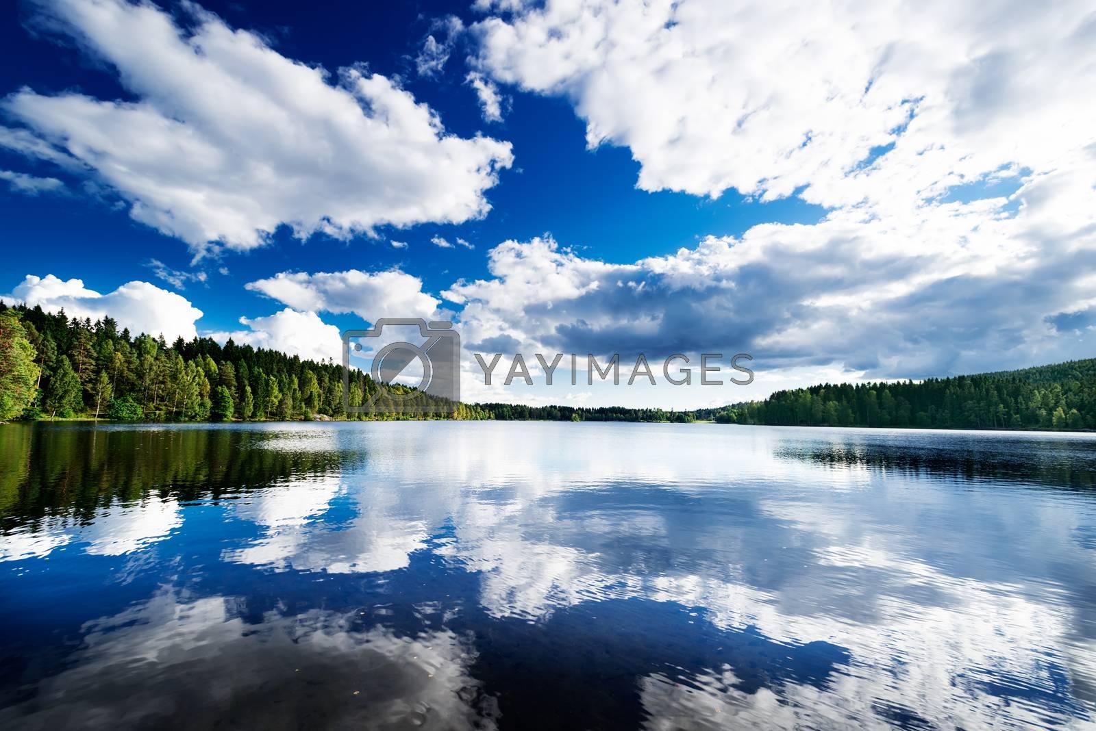 Lake at forest by Nanisimova