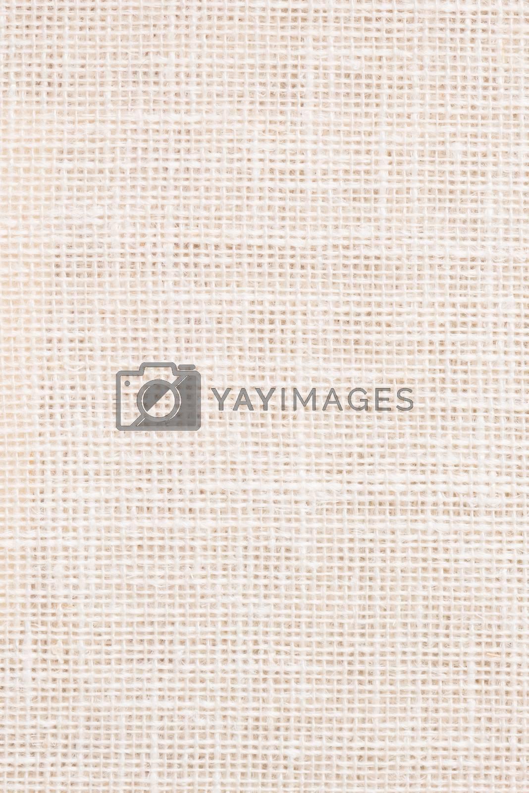 Beige canvas texture  by homydesign