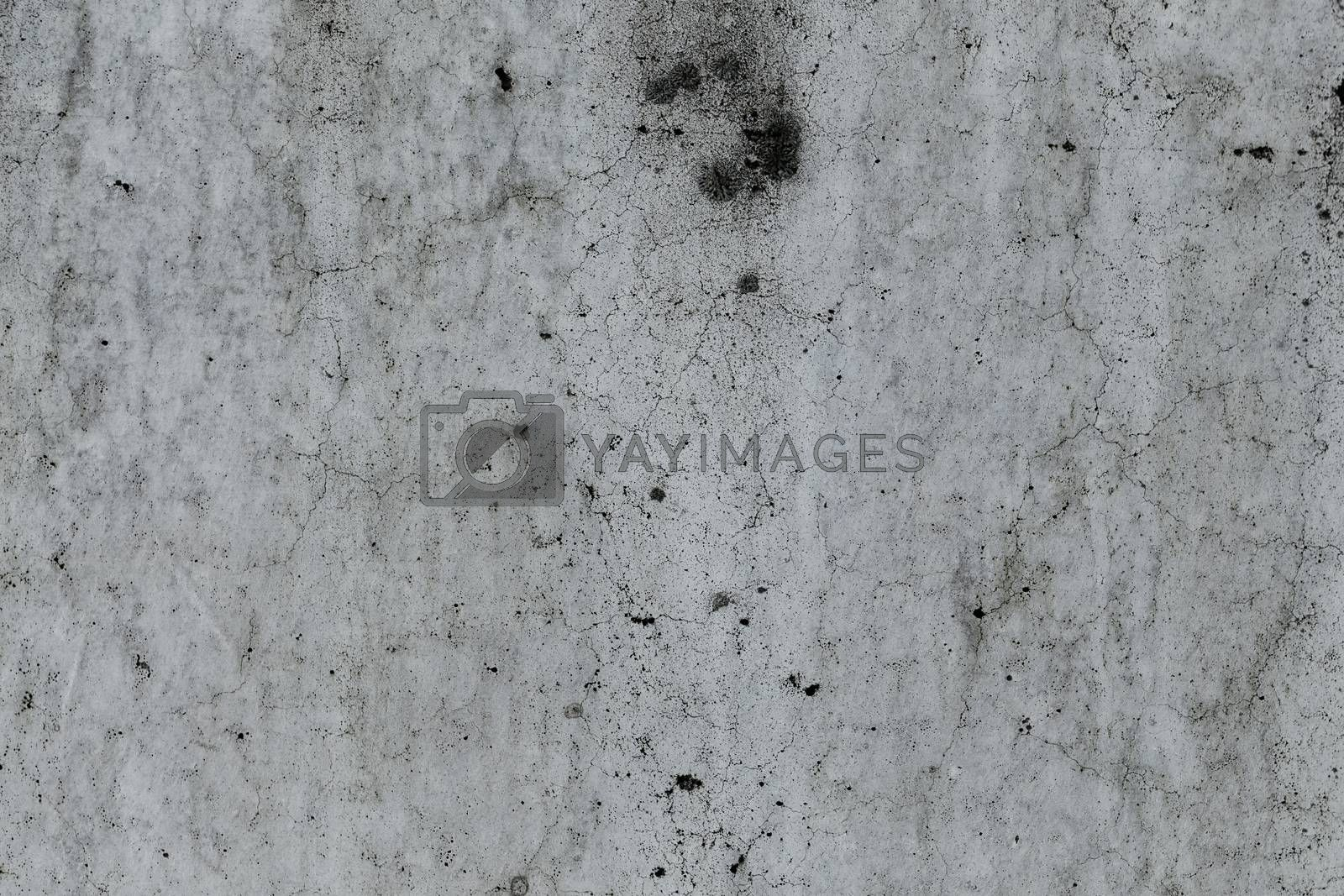 Grungy concrete wall and floor as background by RTsubin