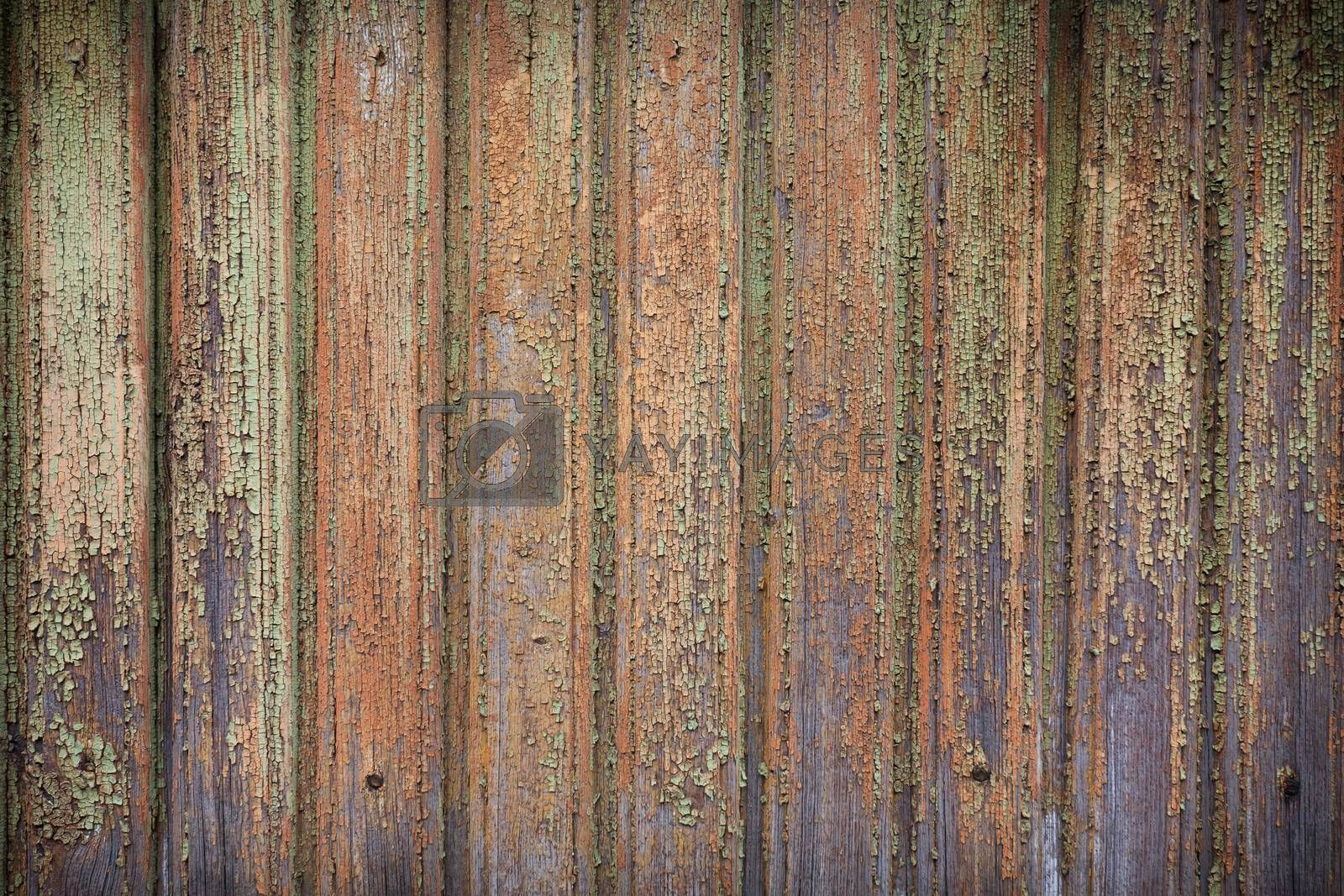 Old wooden painted and chipping paint. by RTsubin