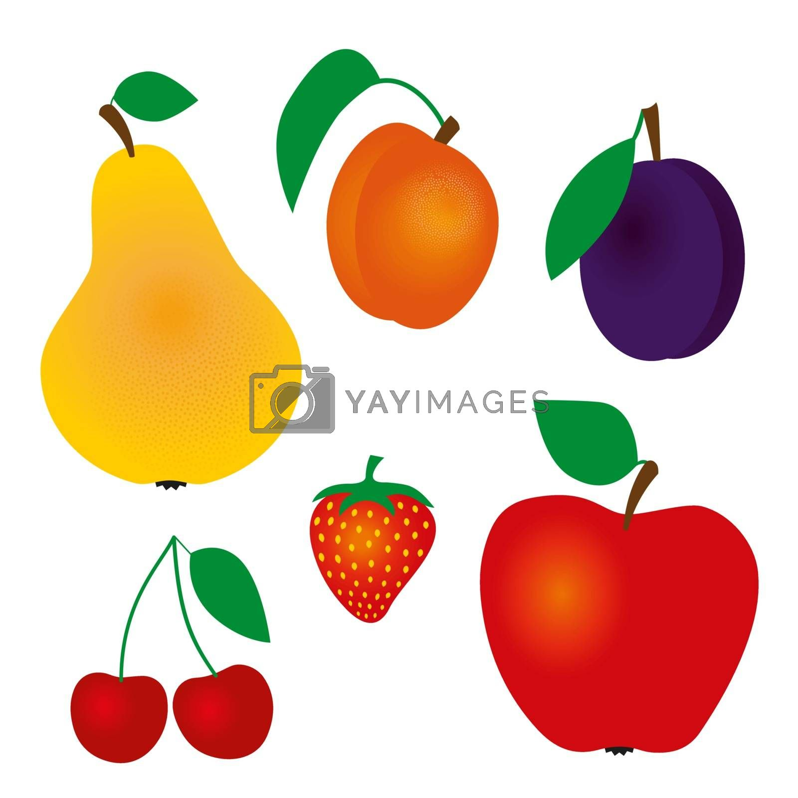 fruit by Ardely