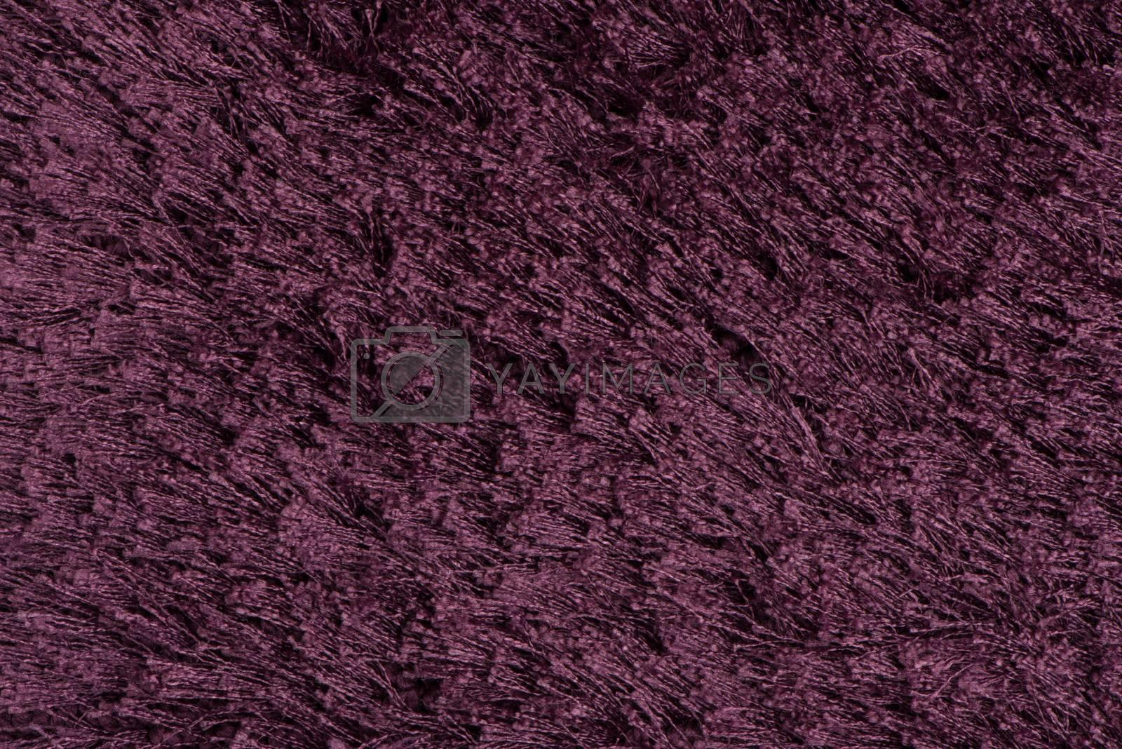 Purple carpet by homydesign