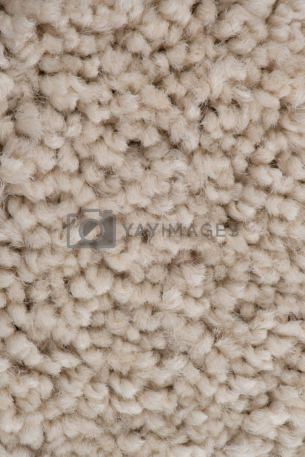 Beige carpet by homydesign