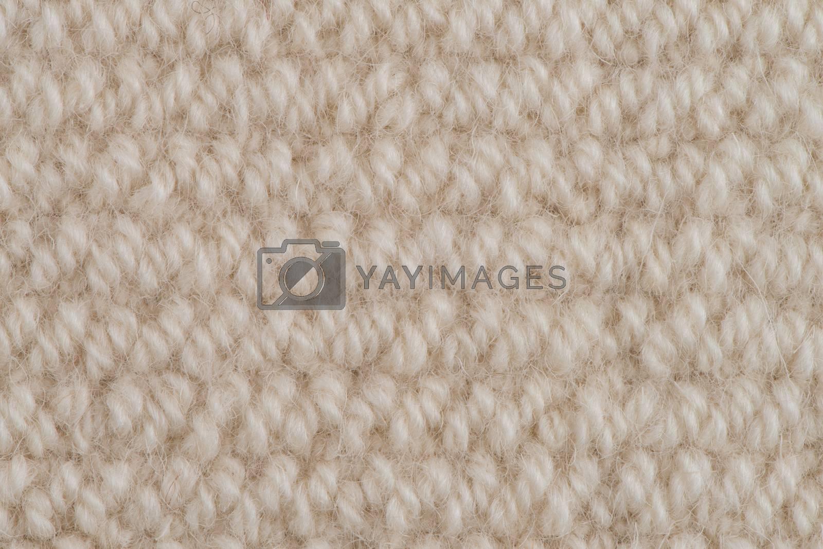 Beige carpet by homydesign