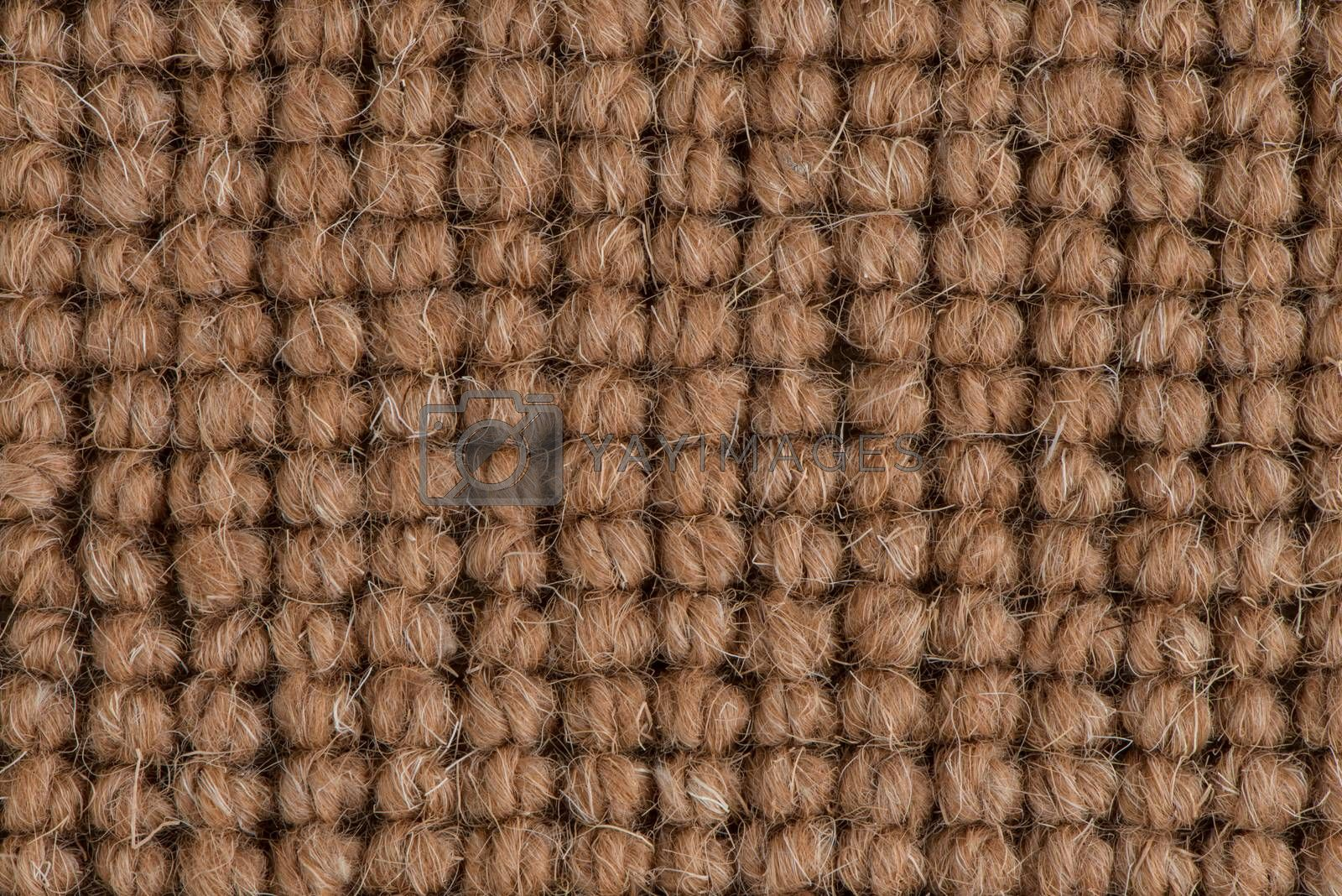 Brown carpet by homydesign