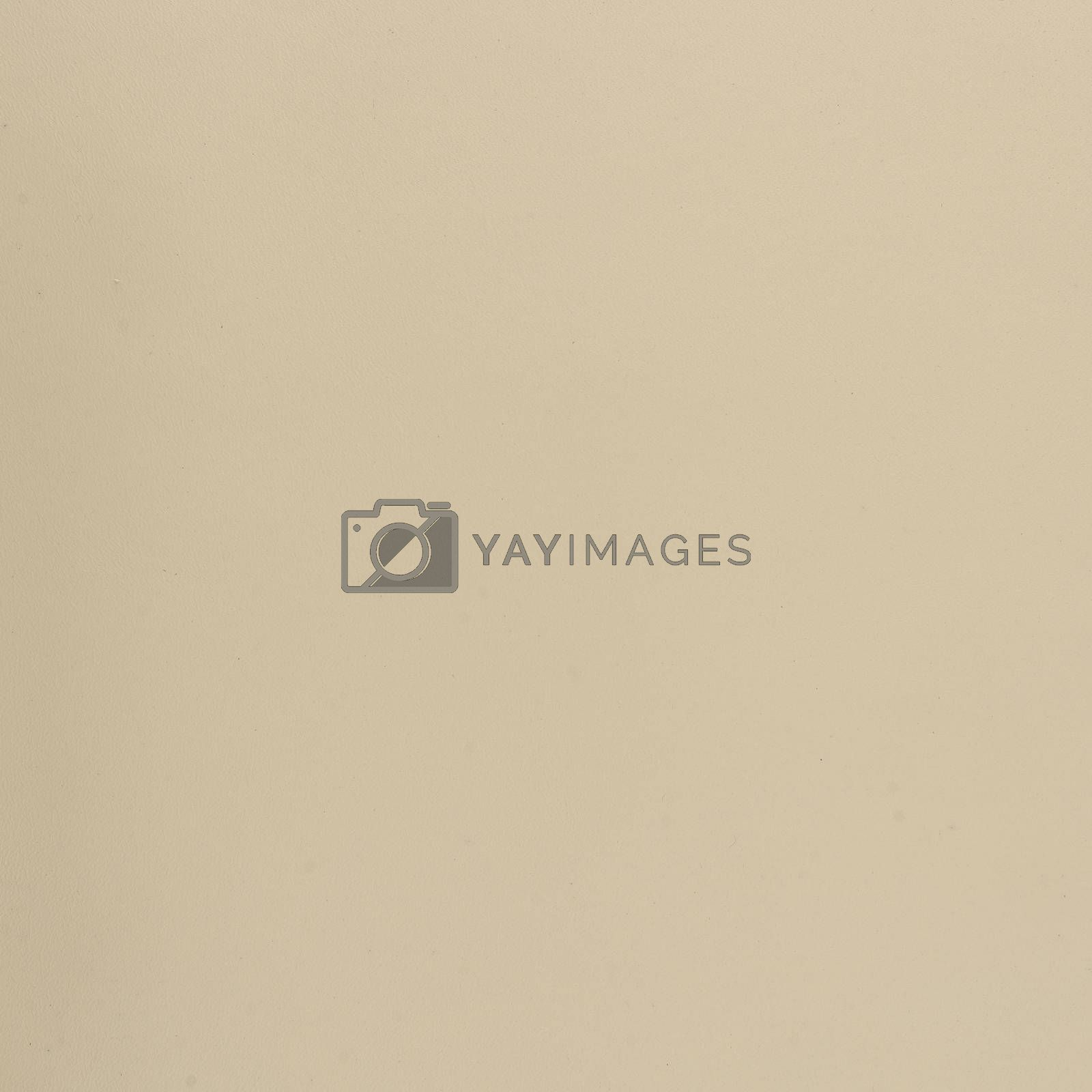 Beige leather by homydesign