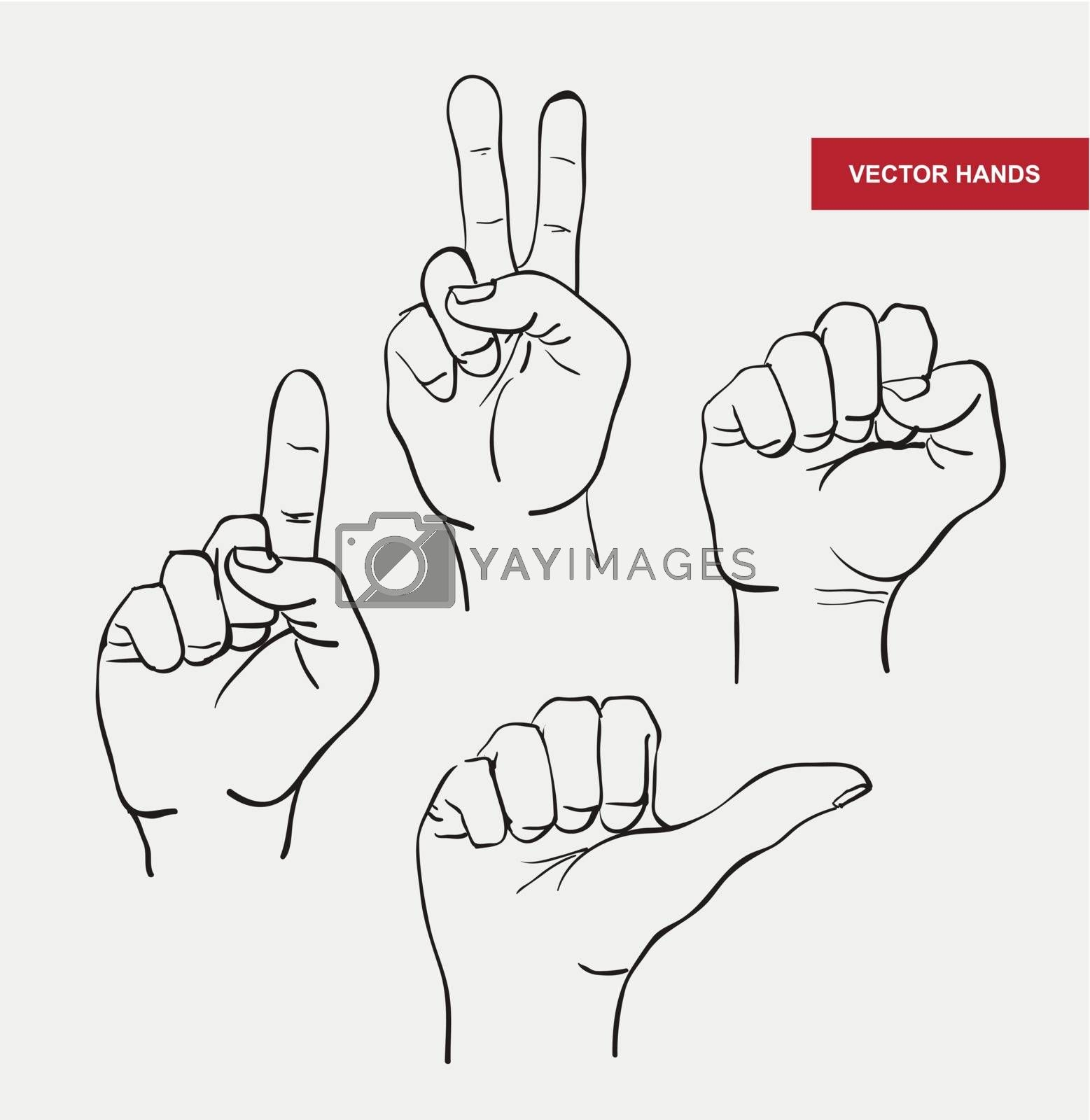 vector hand drawn image hands by OlgaBerlet