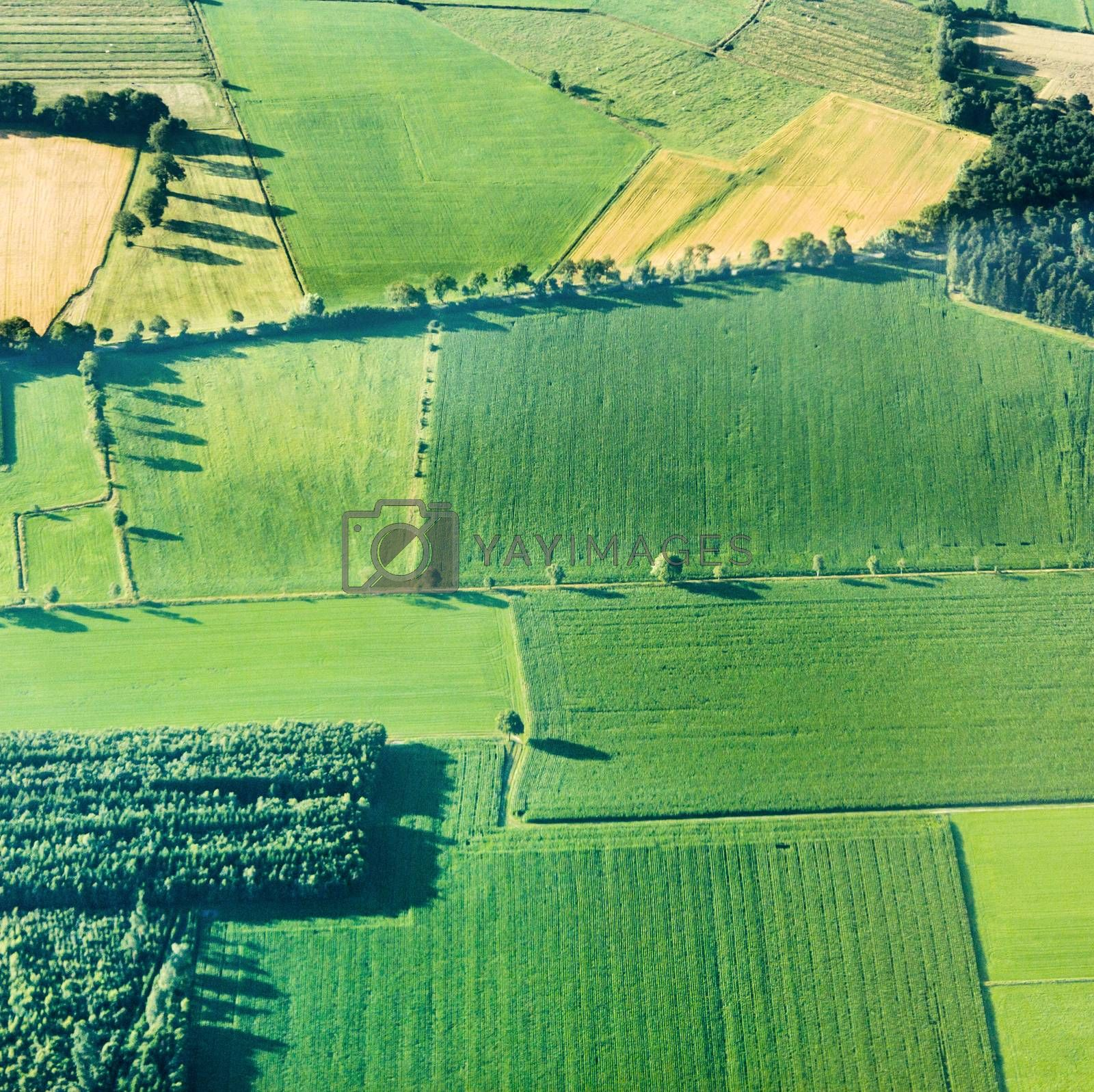 aerial view of green fields and slopes  by meinzahn