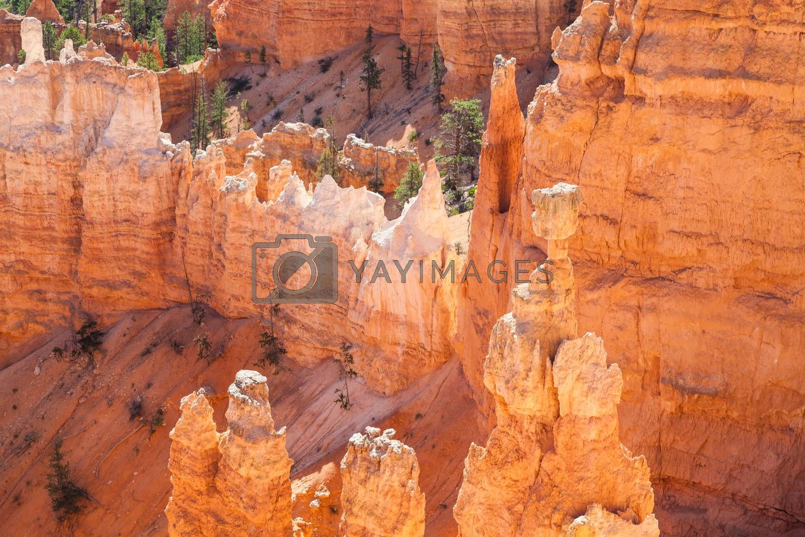Bryce Canyon by Perseomedusa