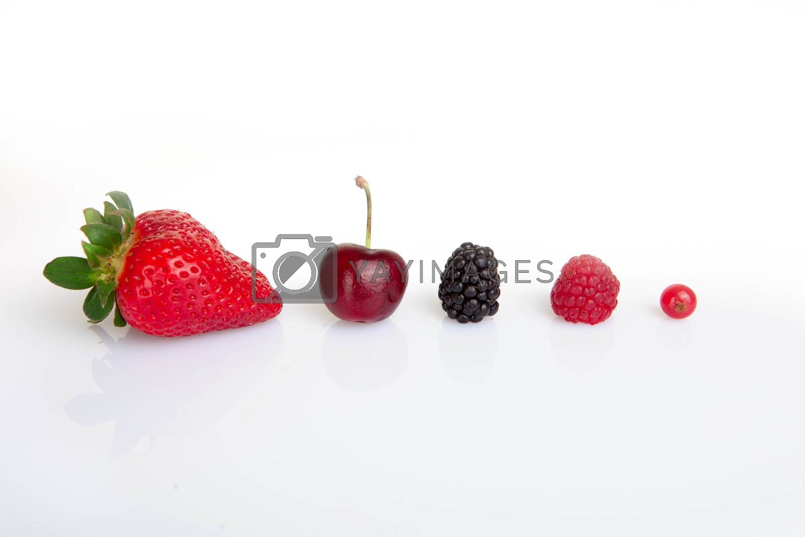 red summer fruits,