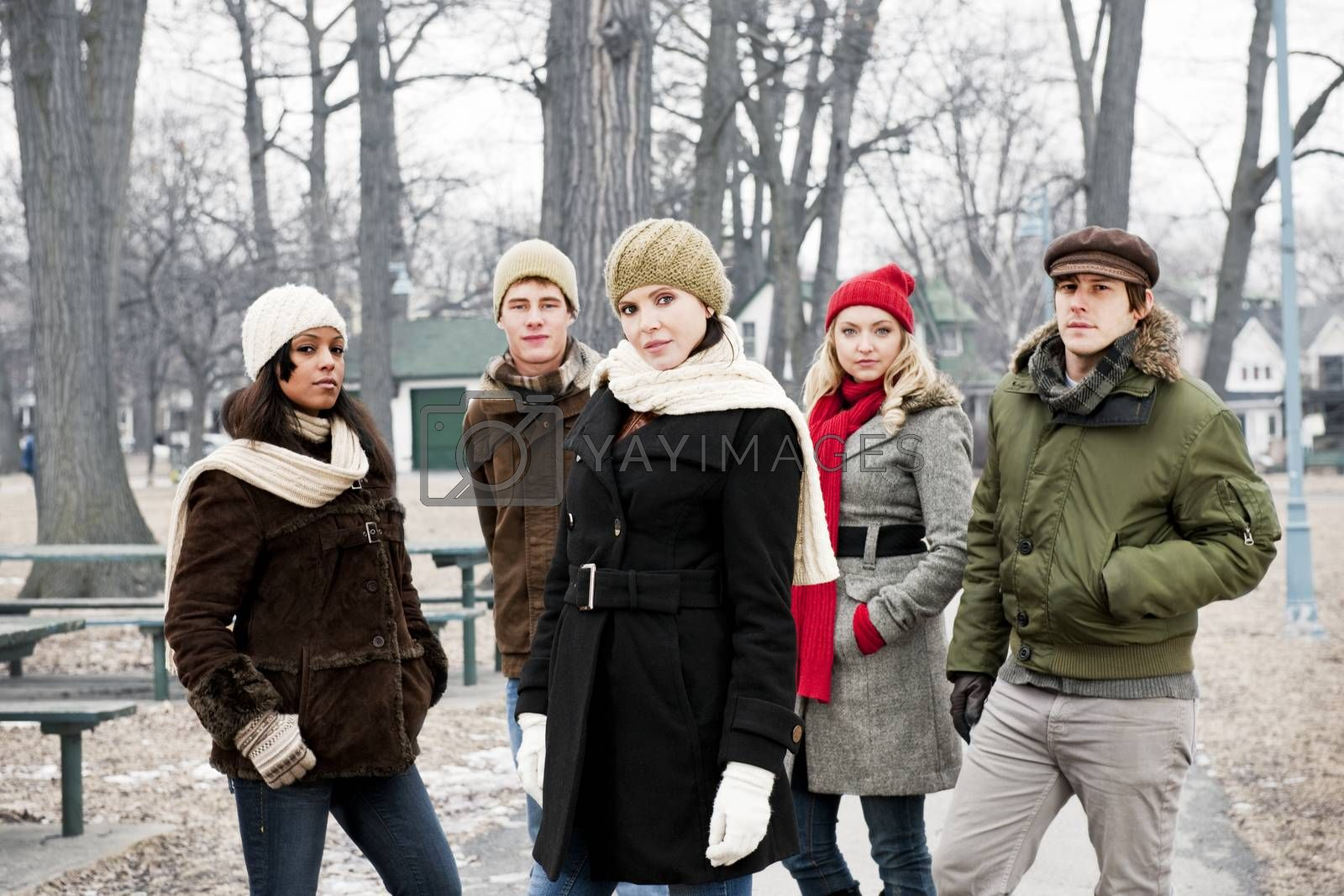 Group of young friends outside in winter by elenathewise