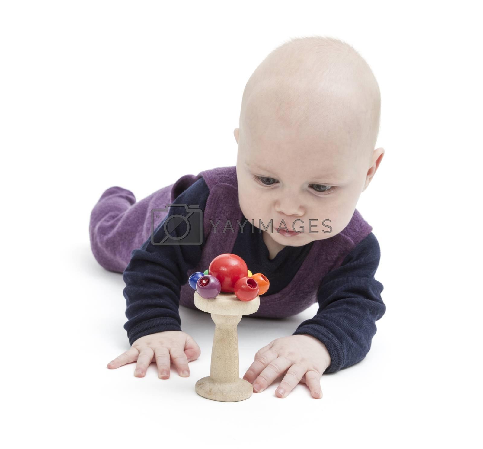 toddler lokking at toy, studio shot isolated on white background