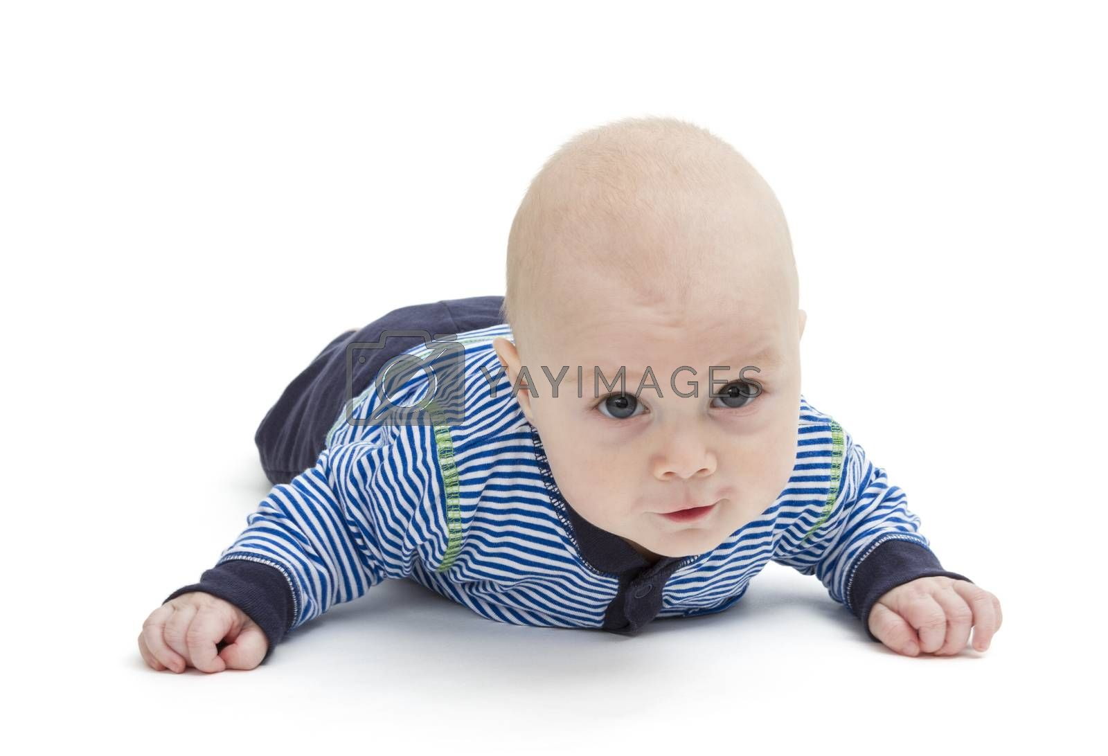 attentive baby laying on ground isolated on white background