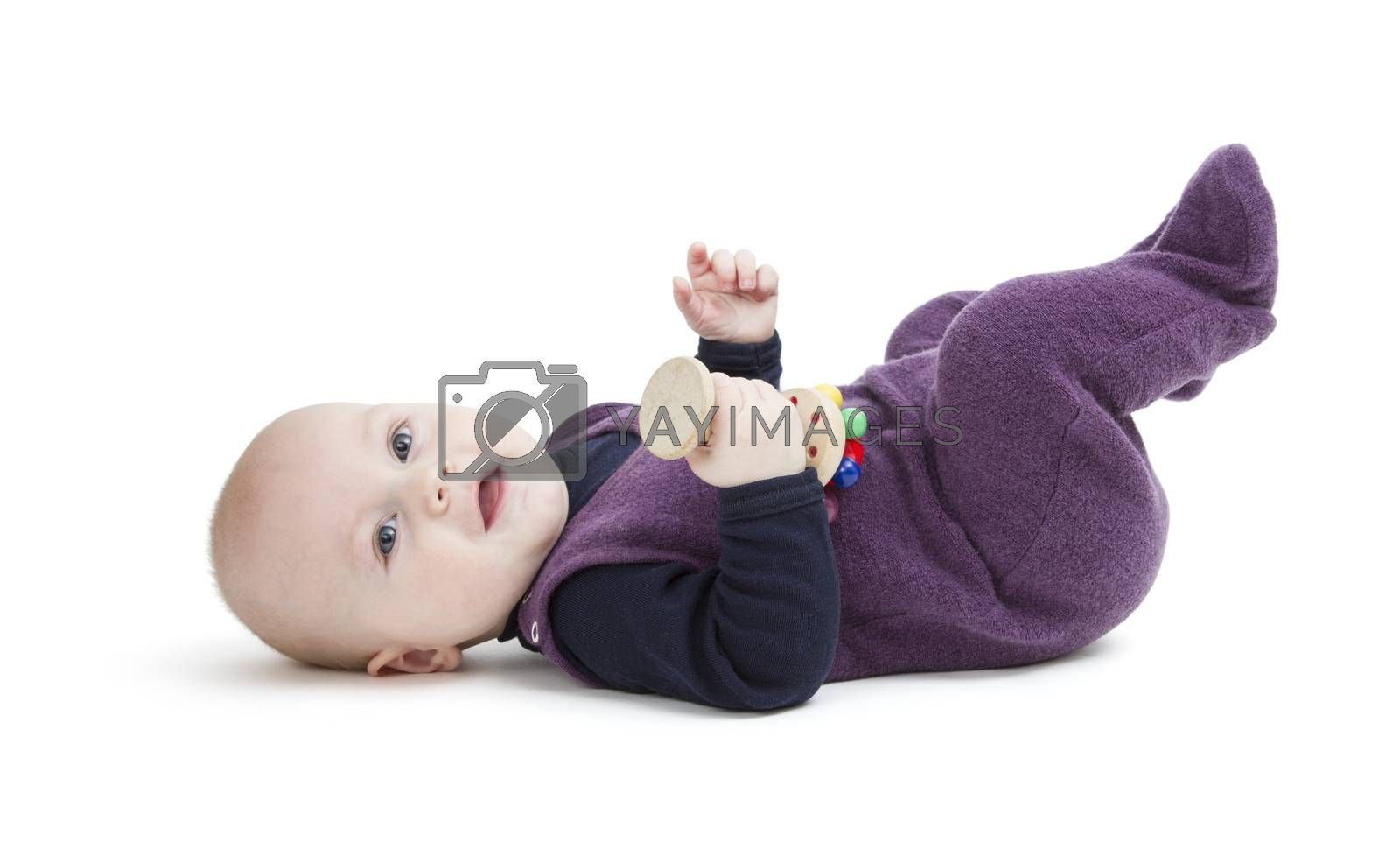 young child isolated on white background looking to camera