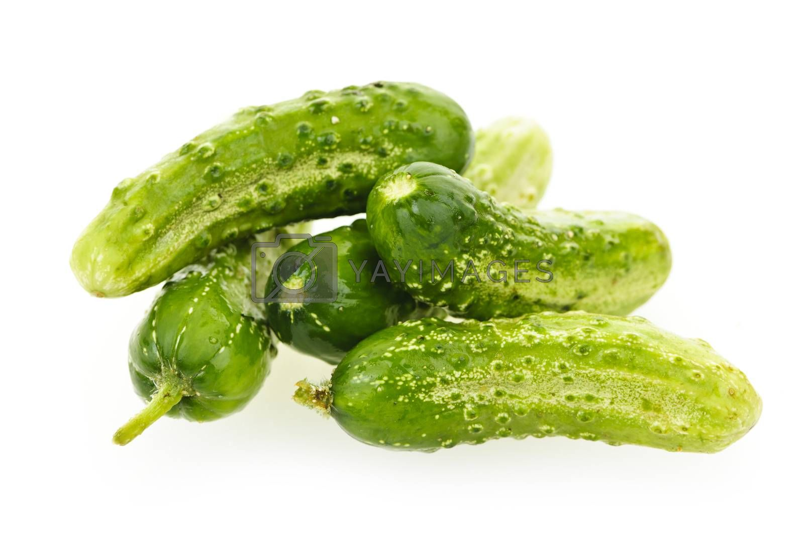 Green fresh small cucumbers isolated on white
