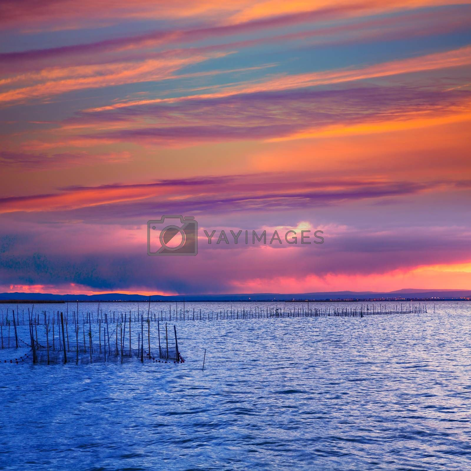Albufera sunset lake park in Valencia el saler colorful sky of Spain