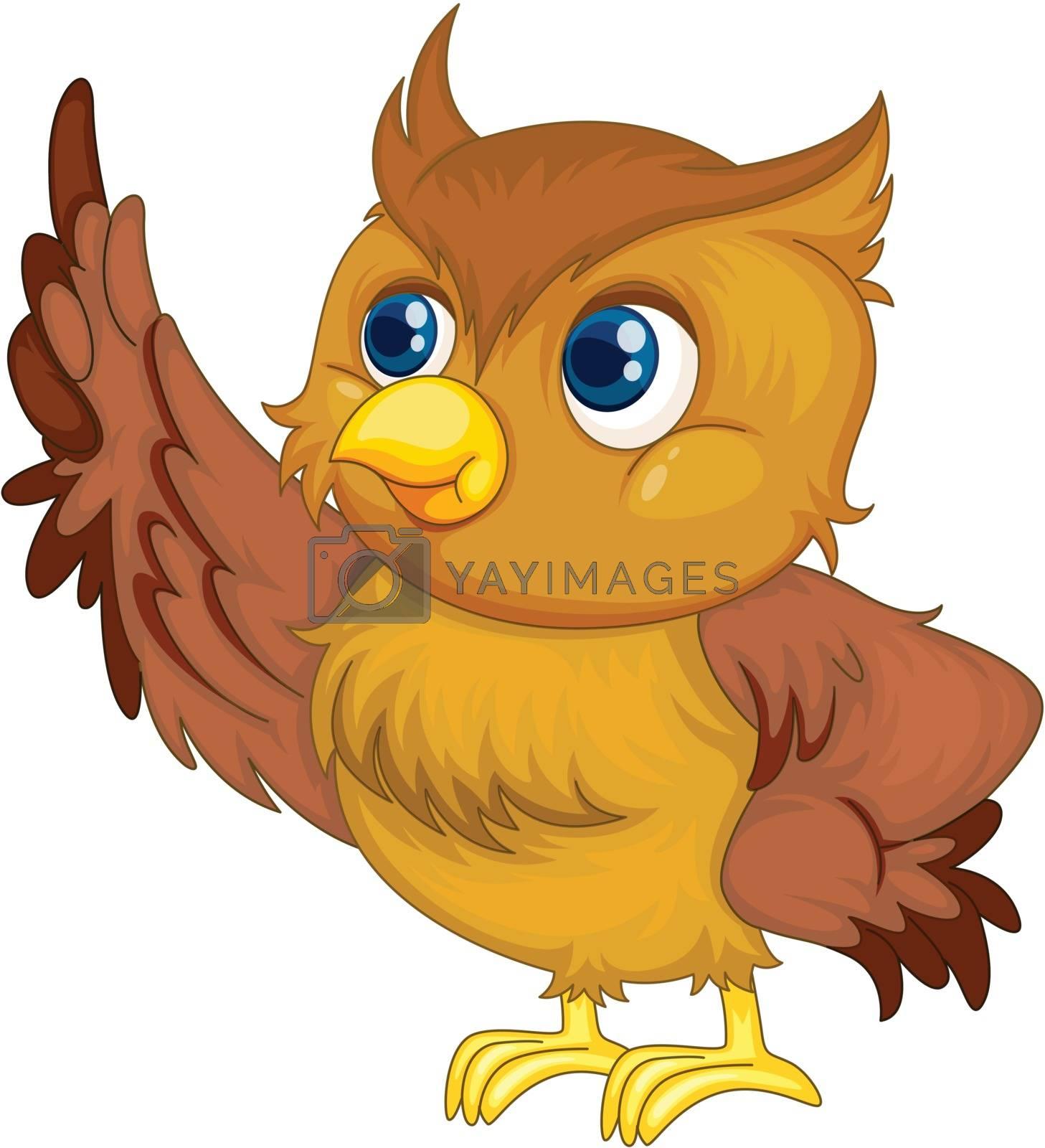 illustration of an isolated owl cartoon