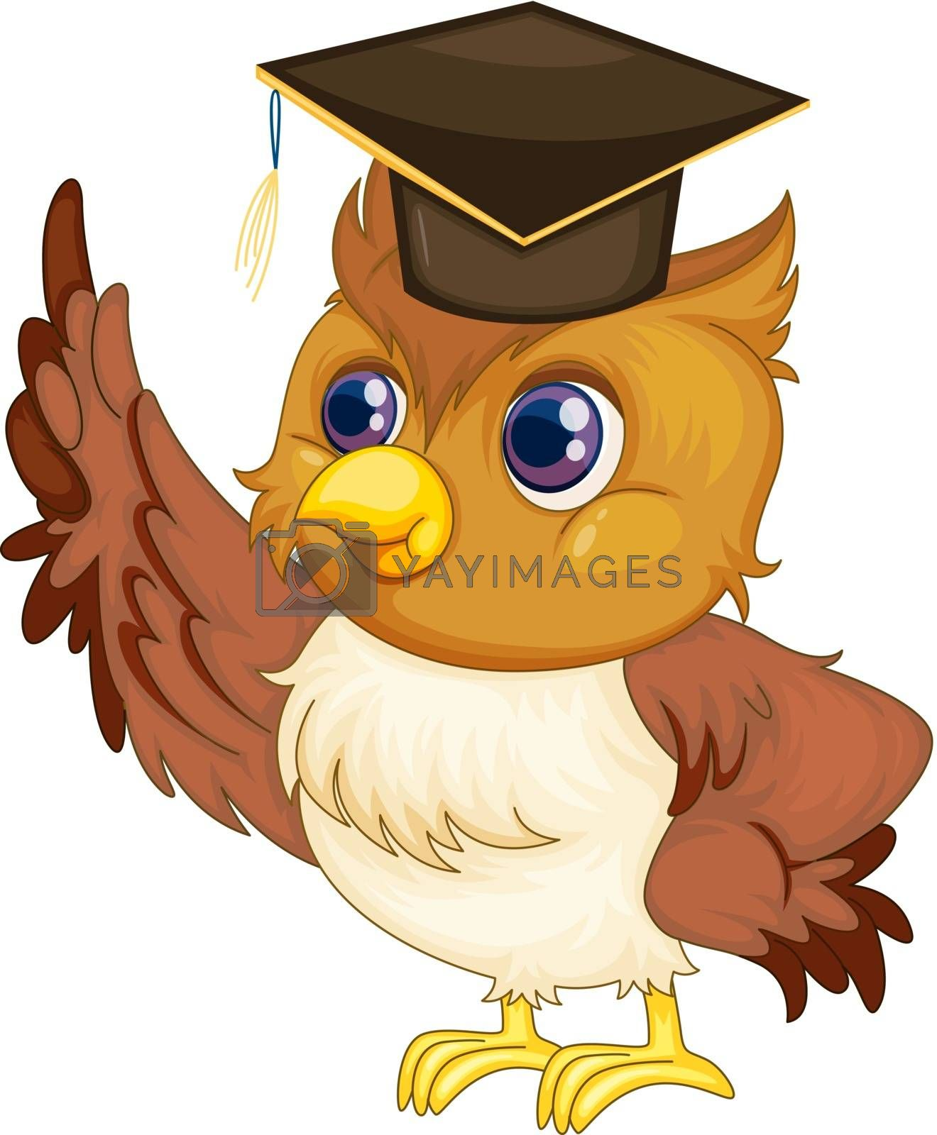 Illustration of an old wise owl