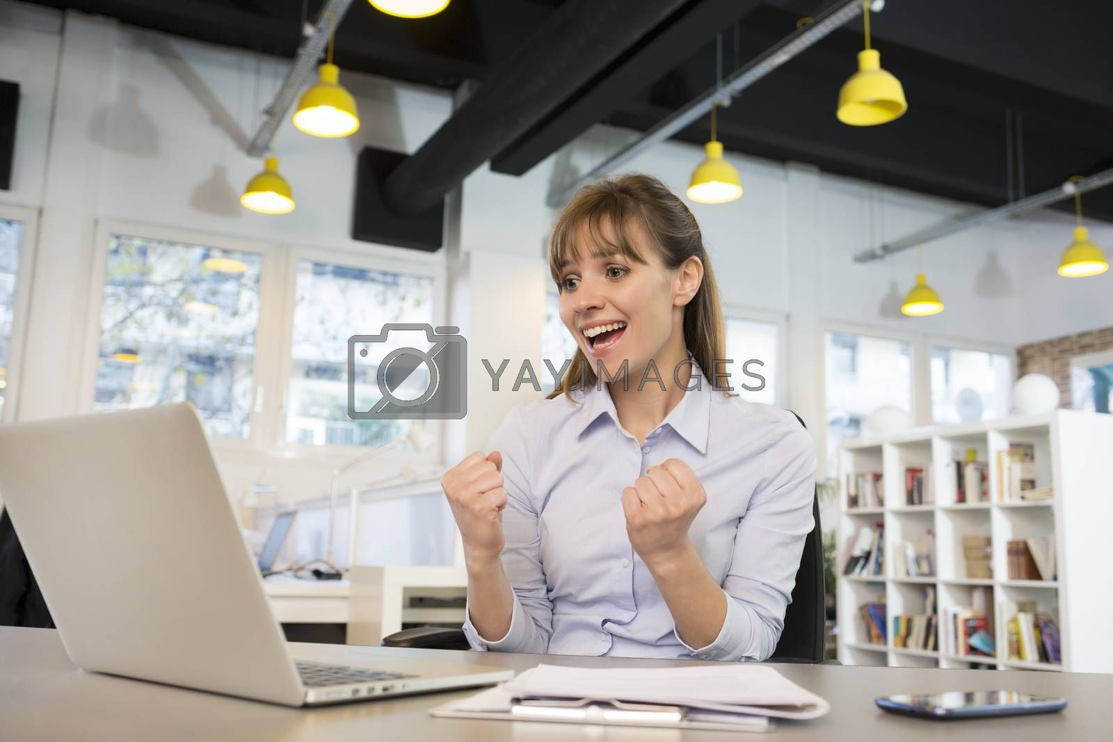 Smiling Business woman  cheerful desk satisfaction