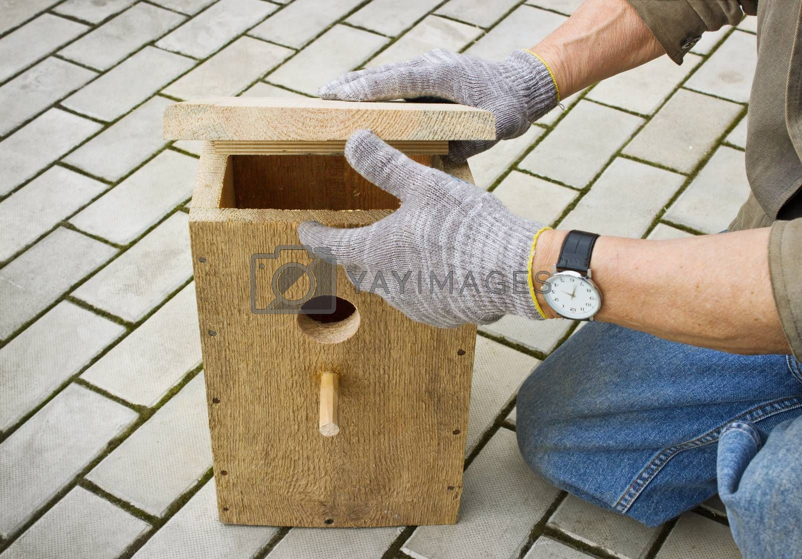 Making a birdhouse from wooden boards spring season