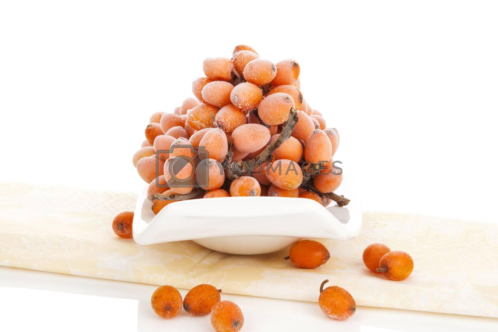 Fresh sea buckthorn berries isolated on white background. Healthy fruit eating, alternative medicine.