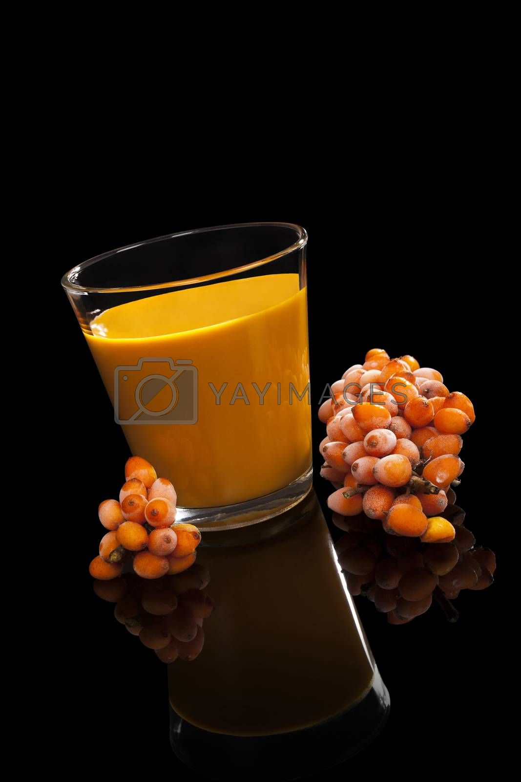 Sea buckthorn juice and berries isolated on black background. Alternative medicine. Healthy fruit eating.