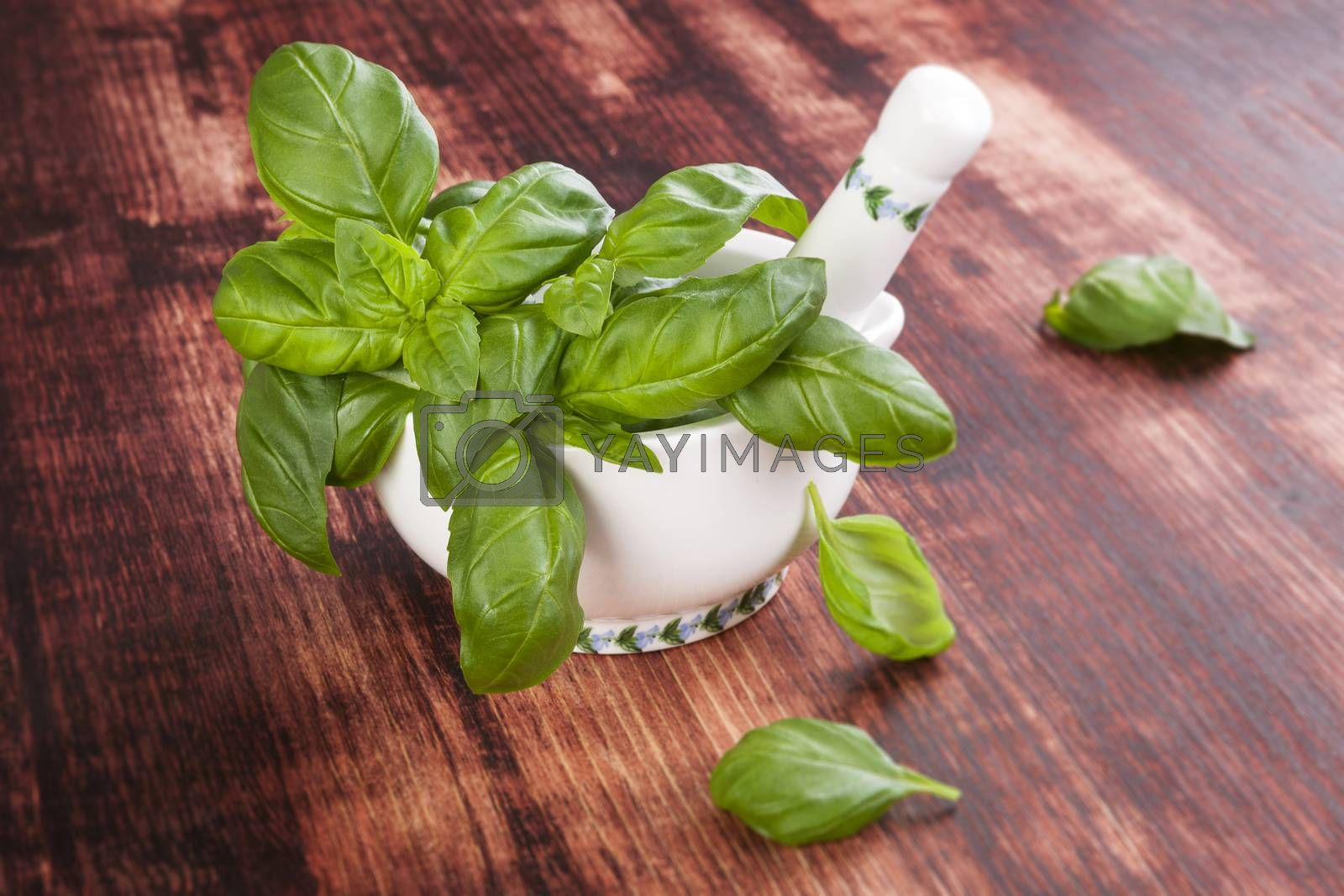 Basil. Fresh aromatic herbs on brown wooden background. Culinary cooking herbs.